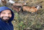 tarkan keçilerle selfie çekti